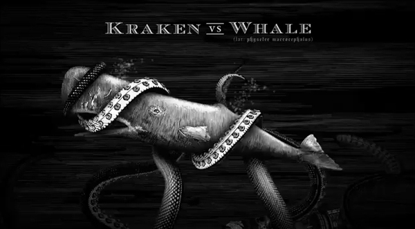 Kraken Rum Illustrated Animations 05 Kraken Rum Illustrated Animations